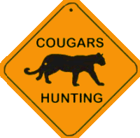 cougars seeking cubs